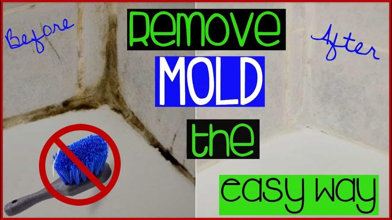 Inspirational Bathtub Mold Gallery Of Bathtub Decor