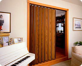 Accordian Closet Door